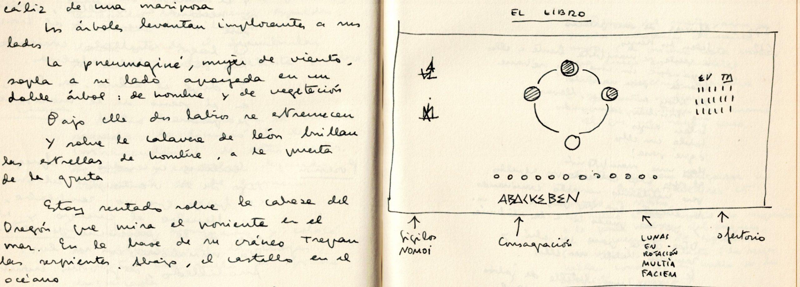 Descubre la 'Biblioteca oculta' de Carlos Garrido